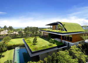 Green Roofing – The Types Available and its Benefits